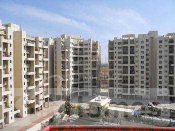 3 BHK Apartment for Sale   in Alandi Road