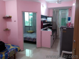 1 BHK Apartment for Sale in Manjri