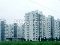 2BHK 2Baths Residential Apartment